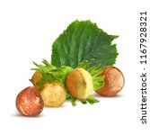 fresh  nutritious  tasty...   Shutterstock .eps vector #1167928321