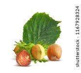 fresh  nutritious  tasty...   Shutterstock .eps vector #1167928324