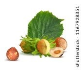 fresh  nutritious  tasty...   Shutterstock .eps vector #1167928351