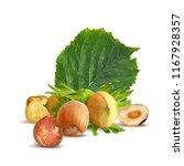 fresh  nutritious  tasty...   Shutterstock .eps vector #1167928357