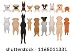 dogs of different breeds... | Shutterstock .eps vector #1168011331