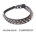 leather collar with metal... | Shutterstock . vector #1168048234