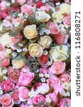 Stock photo colorful rose 116808271
