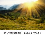 Majestic landscape of mountains. A view of the misty tops of the mountains in the distance. Morning misty coniferous forest hills in fog and rays of sunlight. Travel background.  - stock photo