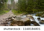 a path in forest and stream ... | Shutterstock . vector #1168186801