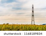 lone electricity tower with... | Shutterstock . vector #1168189834