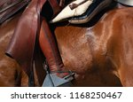 horse and rider closeup  view...   Shutterstock . vector #1168250467