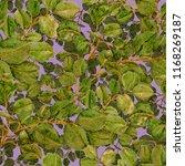 watercolor seamless pattern... | Shutterstock . vector #1168269187