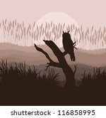 Owl landscape vector background - stock vector