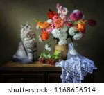 Still Life With A Beautiful...