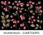 botanical illustration.... | Shutterstock . vector #1168716391