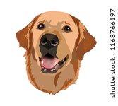 golden labrador retriever... | Shutterstock .eps vector #1168766197