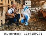 young woman veterinarian giving ... | Shutterstock . vector #1169109271