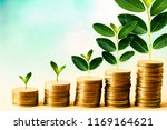Small photo of Concept of investment like a growing plant, There is interest and profit from investing fund. It is stacking coin and sky blue bokeh background. wallpaper for investment and cumulative