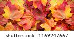 red and orange autumn leaves... | Shutterstock . vector #1169247667