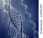 dna double helix molecules and... | Shutterstock . vector #116931397