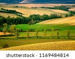 moravian fields  moravia  czech ... | Shutterstock . vector #1169484814