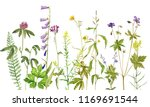 background with watercolor... | Shutterstock . vector #1169691544