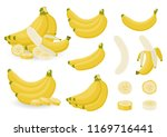 bright vector set of bunches of ... | Shutterstock .eps vector #1169716441