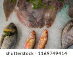 fresh fish carefully displayed... | Shutterstock . vector #1169749414