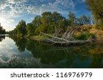 danube delta landscape | Shutterstock . vector #116976979