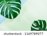 tropical jungle monstera leaves ... | Shutterstock . vector #1169789077