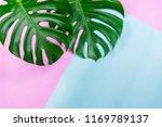 tropical jungle monstera leaves ... | Shutterstock . vector #1169789137