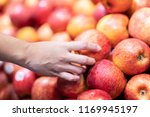 woman holding apple to choose...   Shutterstock . vector #1169945197