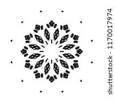 beautiful vector circular... | Shutterstock .eps vector #1170017974