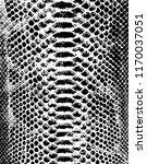 vector snake skin background | Shutterstock .eps vector #1170037051