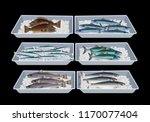 fresh fish in container boxes.... | Shutterstock .eps vector #1170077404