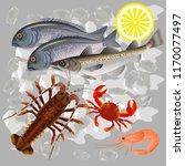 still life of raw fresh fish...   Shutterstock .eps vector #1170077497