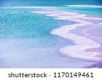 salty textured sea shore. dead... | Shutterstock . vector #1170149461
