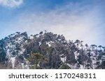 el cani sanctuary  chile. | Shutterstock . vector #1170248311