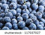 Blueberry Antioxidant Organic...