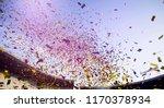 colorful confetti over blue sky | Shutterstock . vector #1170378934