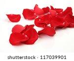 Petals Of Scarlet Roses