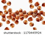 scattered group of hazelnuts on ... | Shutterstock . vector #1170445924