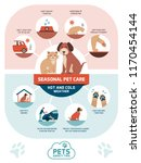 Stock vector seasonal pet safety tips infographic with icons how to protect your pet from heat and cold in 1170454144
