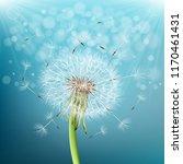 vector dandelion with flying... | Shutterstock .eps vector #1170461431