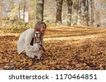 Stock photo young beautiful girl playing with a dog in the park autumn sunny day 1170464851