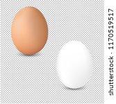 2 fresh egg isolated... | Shutterstock . vector #1170519517