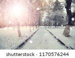 sidewalk winter trees branches | Shutterstock . vector #1170576244