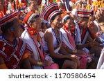 kisama heritage village  kohima ... | Shutterstock . vector #1170580654