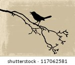 bird silhouette on old paper | Shutterstock . vector #117062581