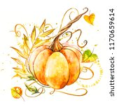 pumpkin. hand drawn watercolor... | Shutterstock . vector #1170659614