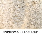 natural stone background | Shutterstock . vector #1170840184