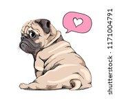 adorable beige puppy pug. humor ... | Shutterstock .eps vector #1171004791