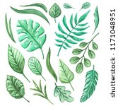 plant leafs pattern background | Shutterstock . vector #1171048951