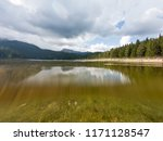 crystal clear forest lake... | Shutterstock . vector #1171128547